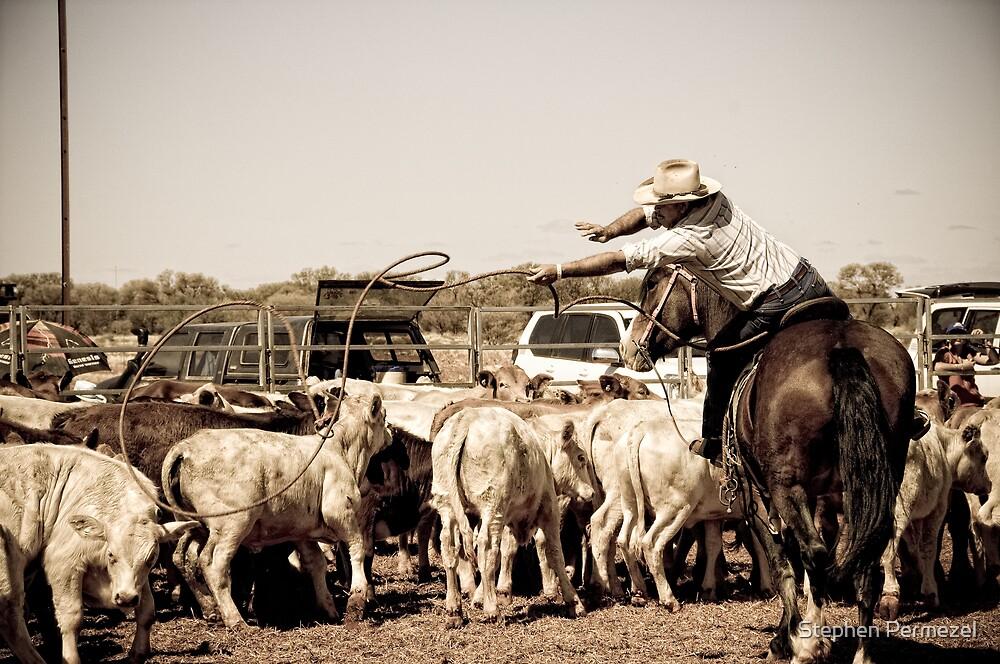 Lasso - Marla, South Australia by Stephen Permezel