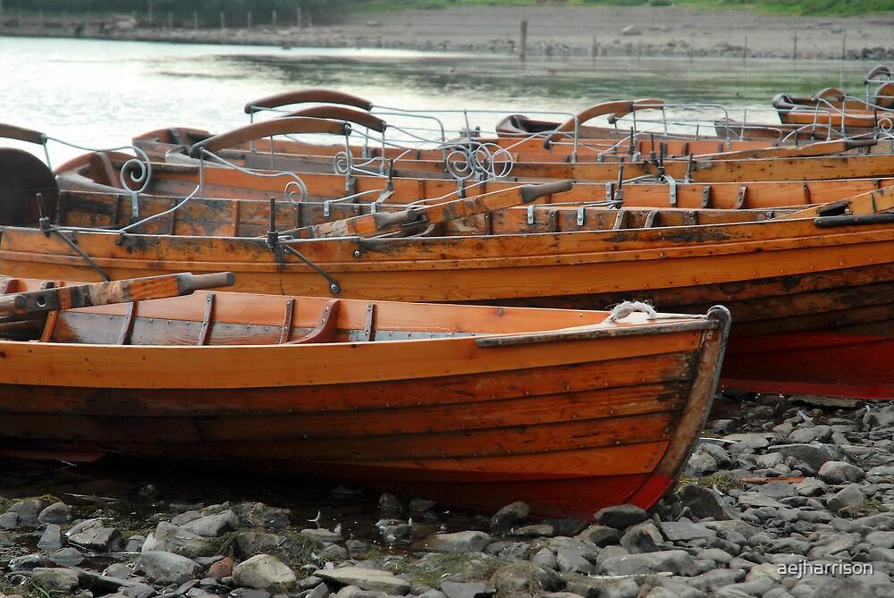 Rowing Boats by aejharrison