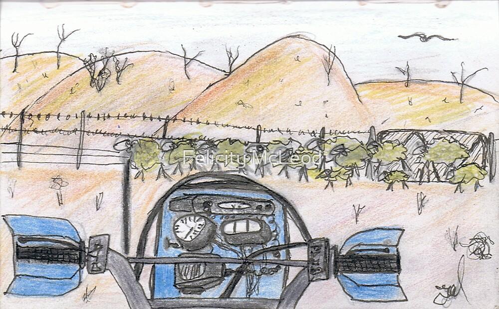 """""""Hills View"""" - Elders Book Art Work by Felicity McLeod"""