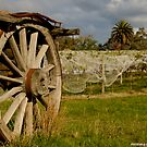 Country Wagon by dazzleng