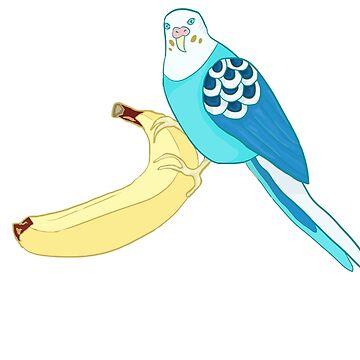 Budgie with a banana  by azambok