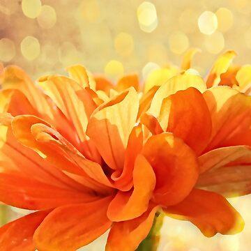 Glowing Marigold by JudyPalkimas