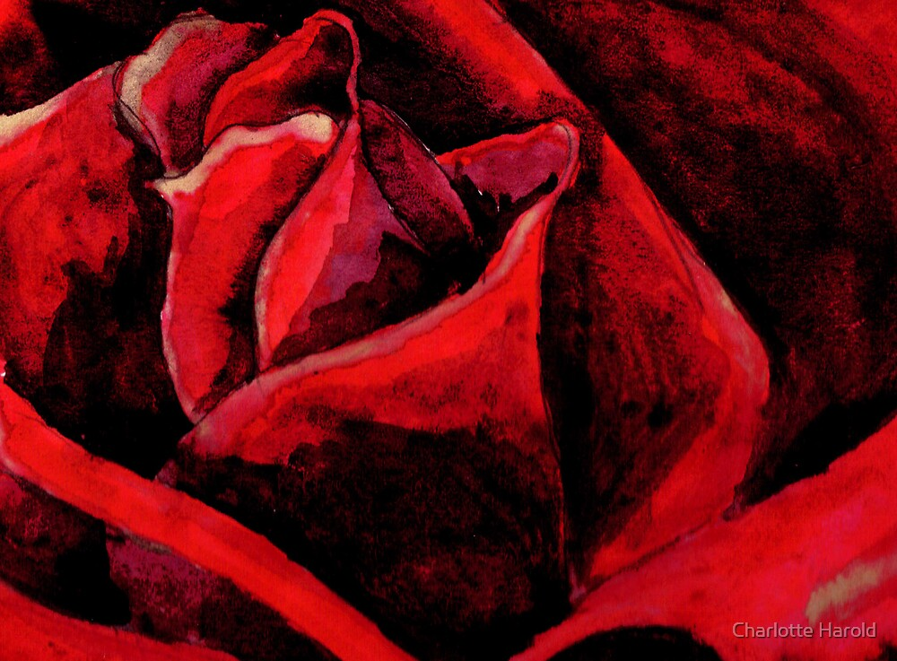Red Red Rose by Charlotte Harold