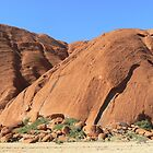 Uluru # 2 , N.T. Central Australia  Just a small section,  by Virginia  McGowan