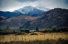 Sawtooth (Smokey) Mountains by John Schneider