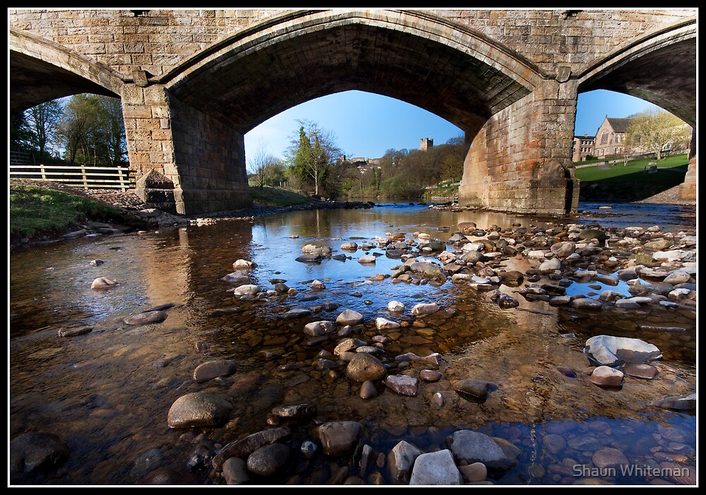Under the Bridge by Shaun Whiteman
