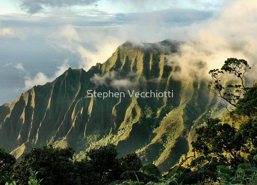 Napali Clearing Storm, Kauai by Stephen Vecchiotti