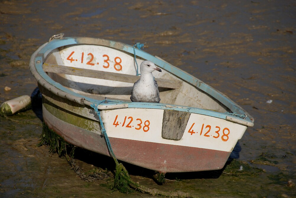 OK. So who Stole my Outboard! by Barry Goble