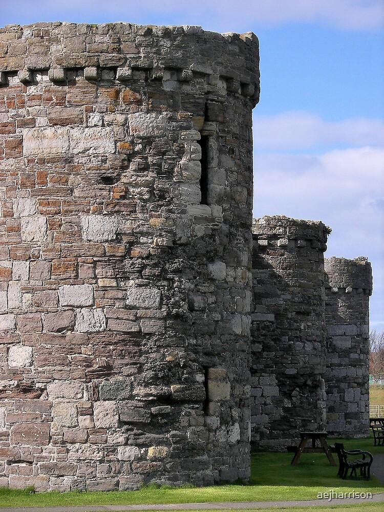 Beaumaris Castle by aejharrison