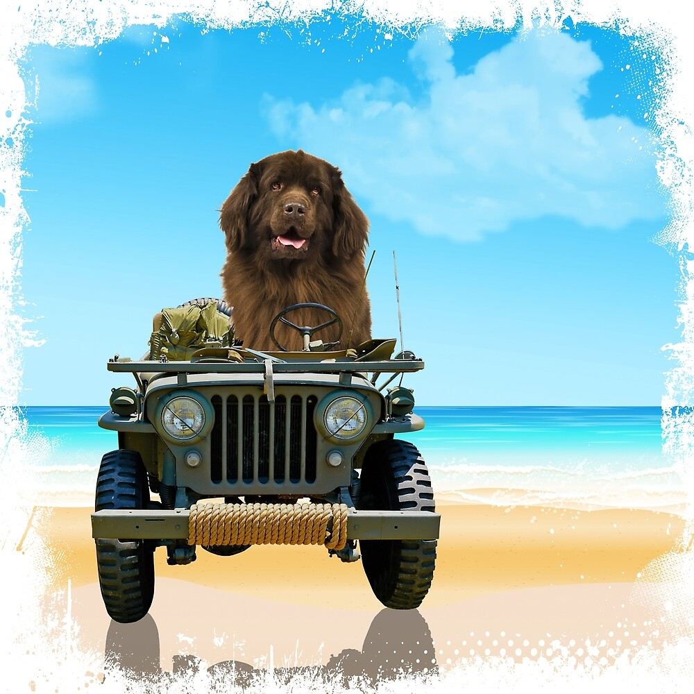 Army Brat at the Beach by Christine Mullis