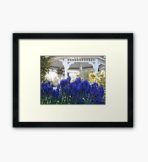 Joy of  Spring   /  In Glorious Color    Framed Print