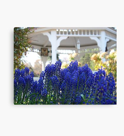 Joy of  Spring   /  In Glorious Color    Canvas Print