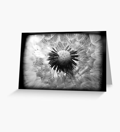 On the Inside - TTV Greeting Card