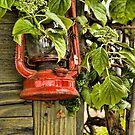 Red Lantern by Appel
