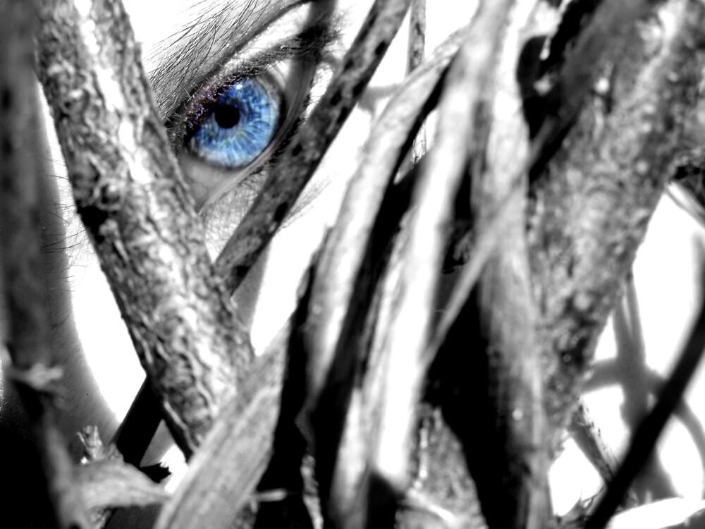 Preying Eye by viper720