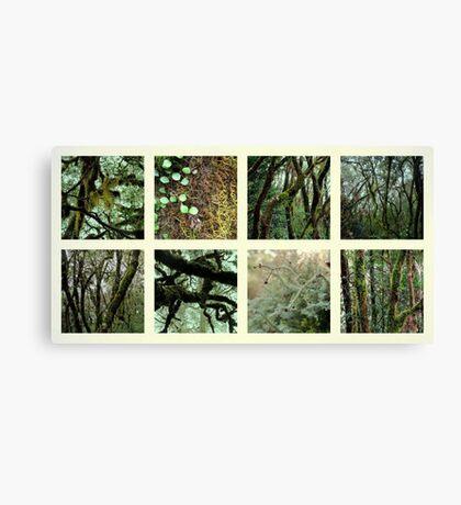 Alpine Rainforest Canvas Print