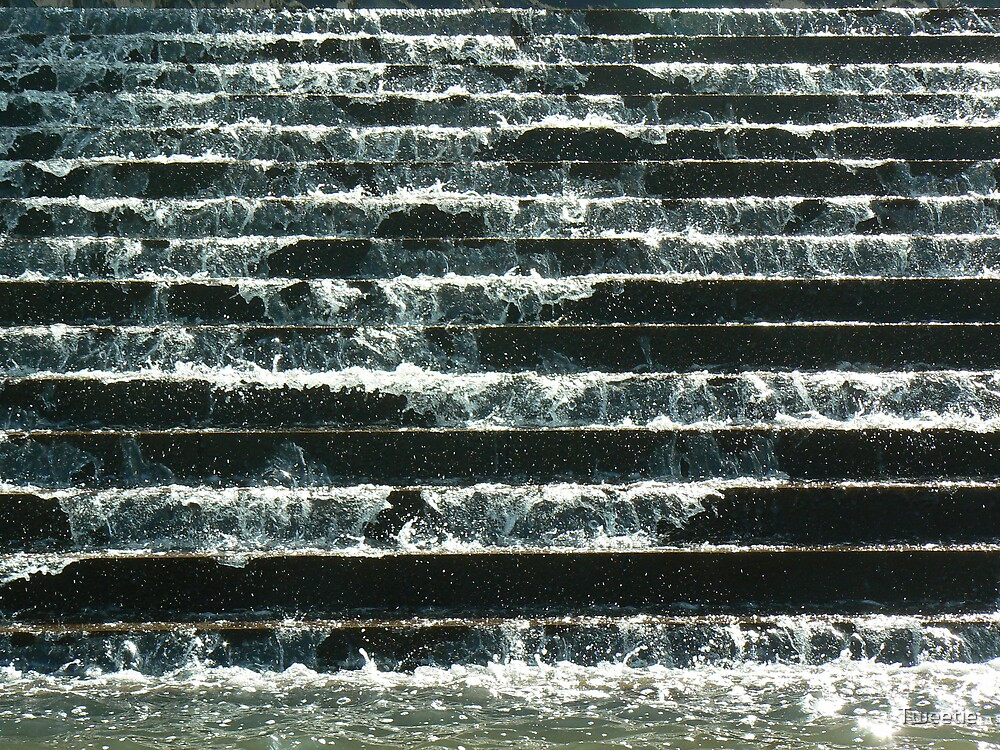 Brisbane Water Feature by Tweetie