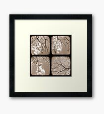 Look Through My Window - TTV Framed Print