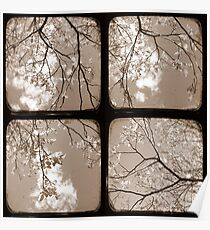 Look Through My Window - TTV Poster