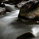 Color and Form on the Upper Baker River by Wayne King