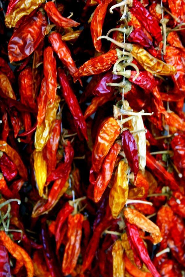italian chilli's by audreyaroha
