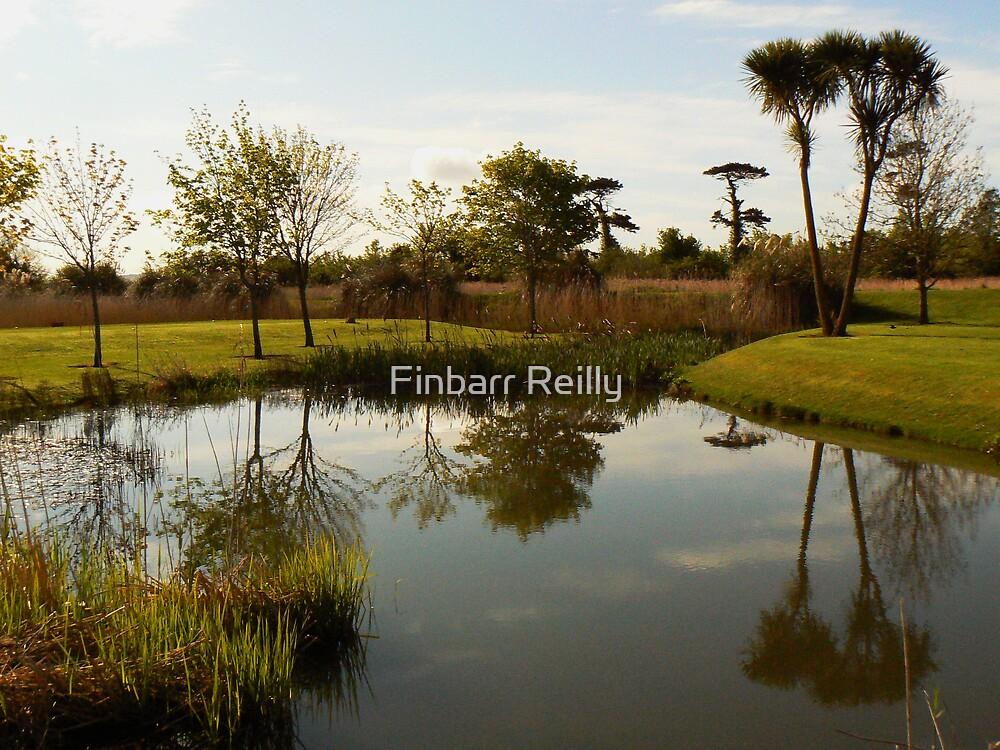 Reflection  by Finbarr Reilly