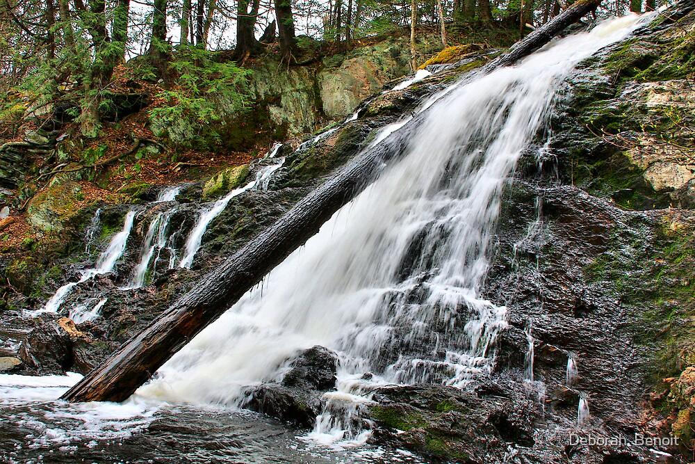 Fairfield Waterfall - Side Angle by Deborah  Benoit