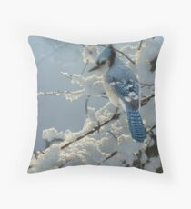 """Blue Jay """"On the Fence"""" Throw Pillow"""