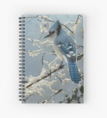 """Blue Jay """"On the Fence"""" Spiral Notebook"""