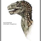 velocirator mongoliensis by farreaching