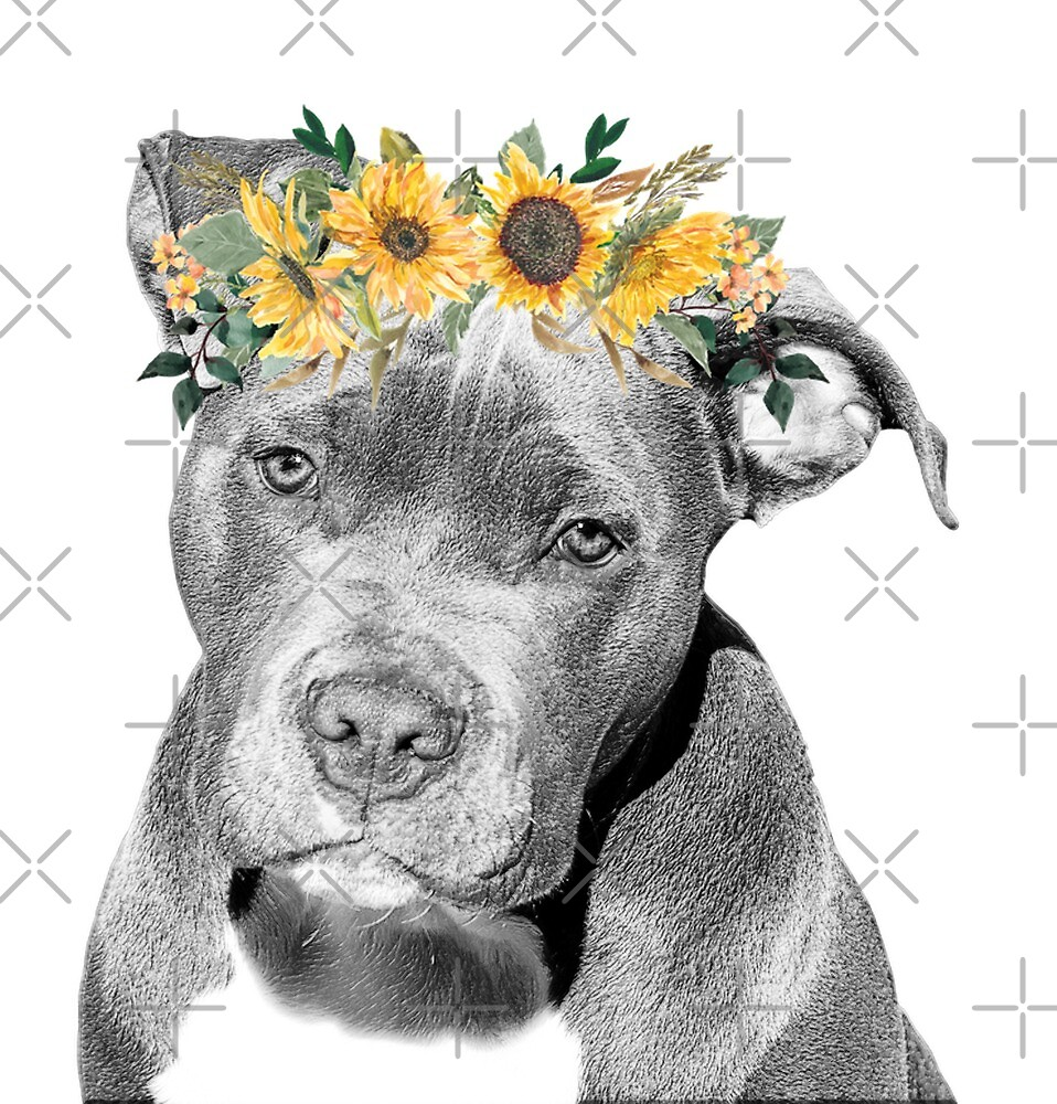 Pit Bull With Sunflower Flower Crown By Colorflowart Redbubble