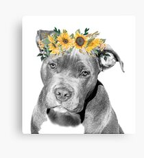 Pit Bull With Sunflower Flower Crown  Canvas Print
