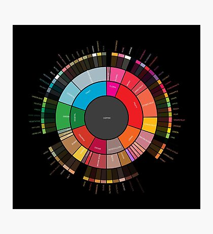 """Coffee """"Flavor.Wheel"""" by Jared S Tarbell - Adapted for Redbubble Rupert Russell Photographic Print"""