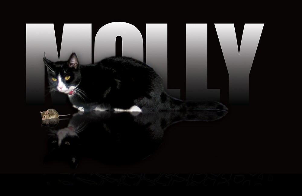 Molly with mouse by Ray Pethick