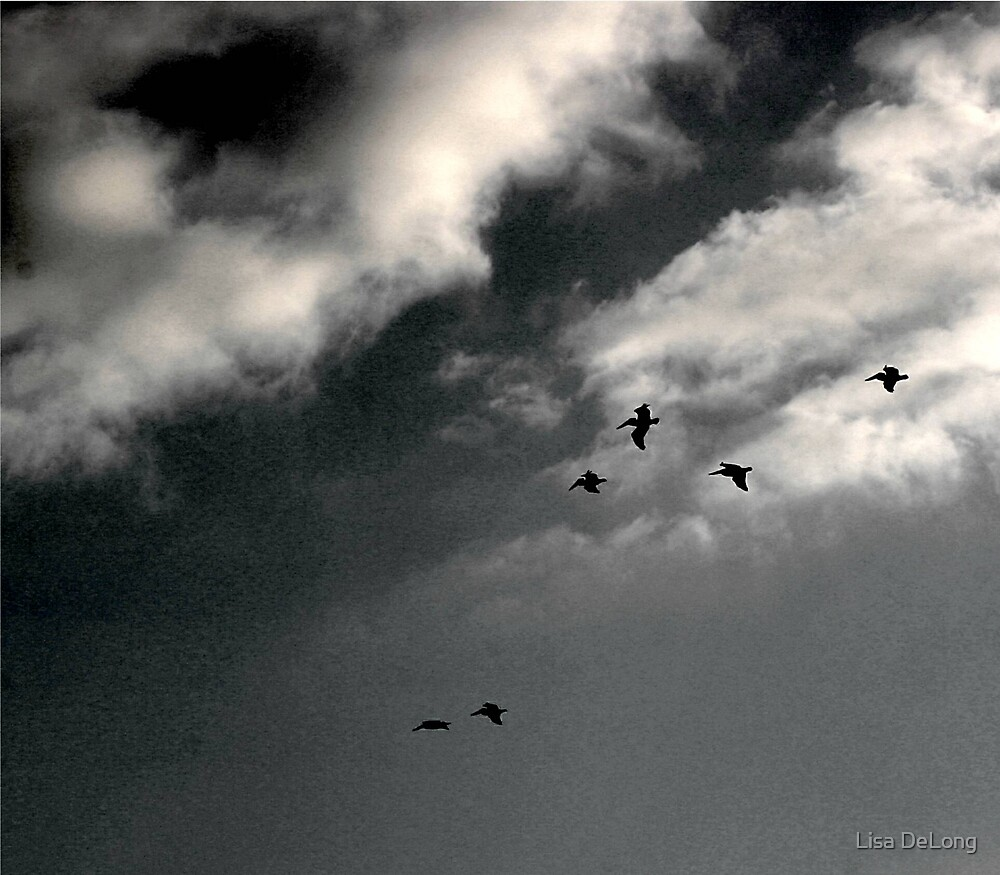 Going Home by Lisa DeLong