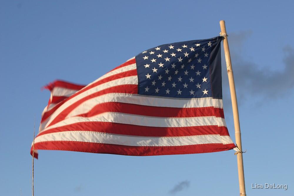 America by Lisa DeLong