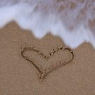 Love in the Sand by Lisa DeLong