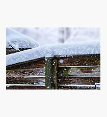 Snow is falling... Photographic Print