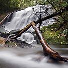 Nature Photography | Waterfall and River Landscape by Leonardo Ramos