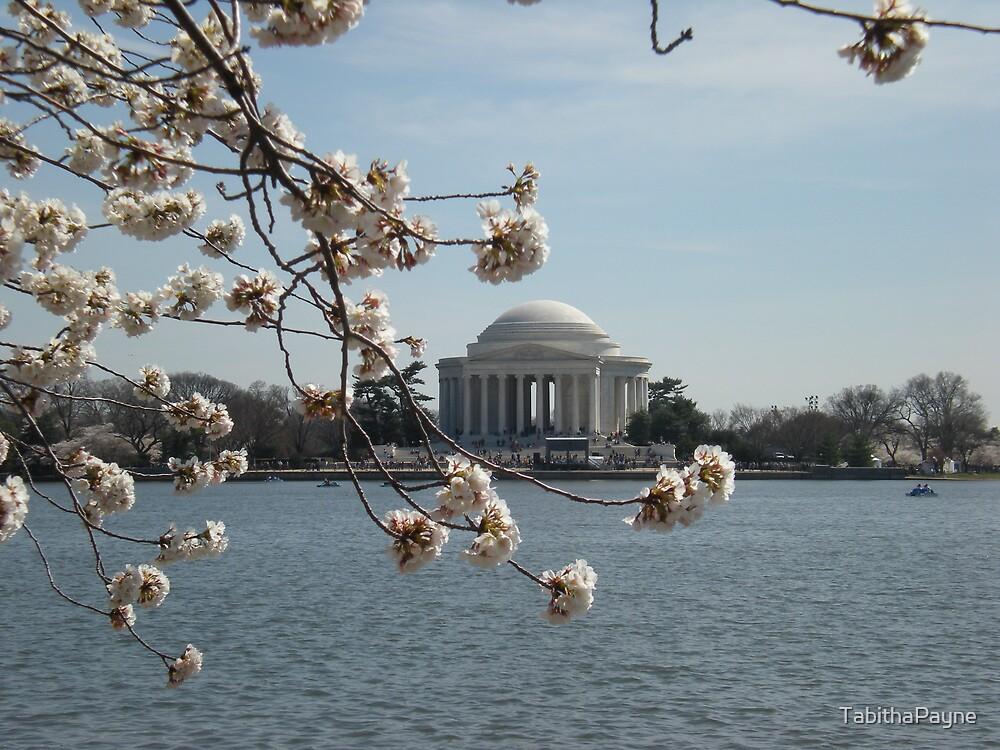 Jefferson Memorial  by TabithaPayne