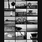 Oceanside Collage by Donovan Olson