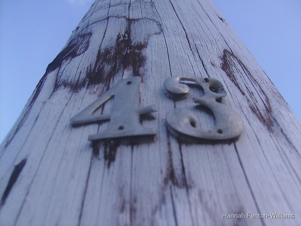 43 by Hannah Fenton williams