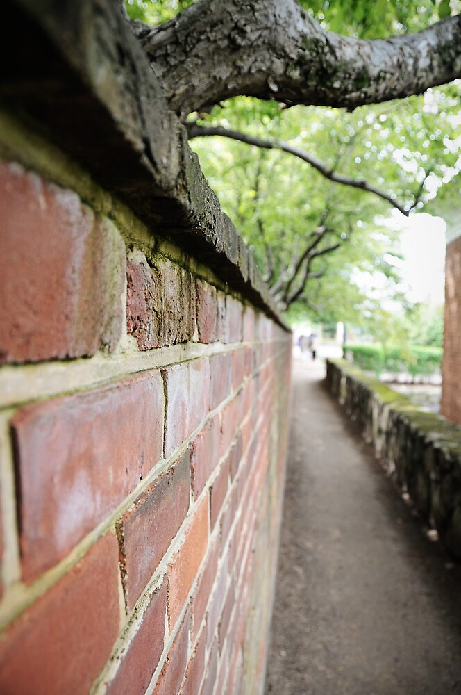 Brick Wall 1 by swesselhoft