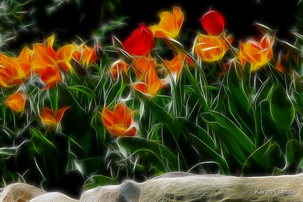 Tulip Garden by Karen Checca