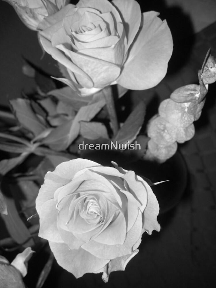 Roses of Orange in Black & White (1) by dreamNwish