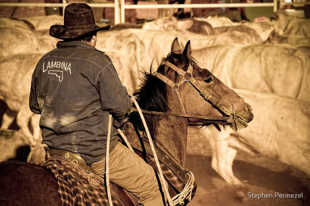 Catcher on Horse - Marla, South Australia by Stephen Permezel