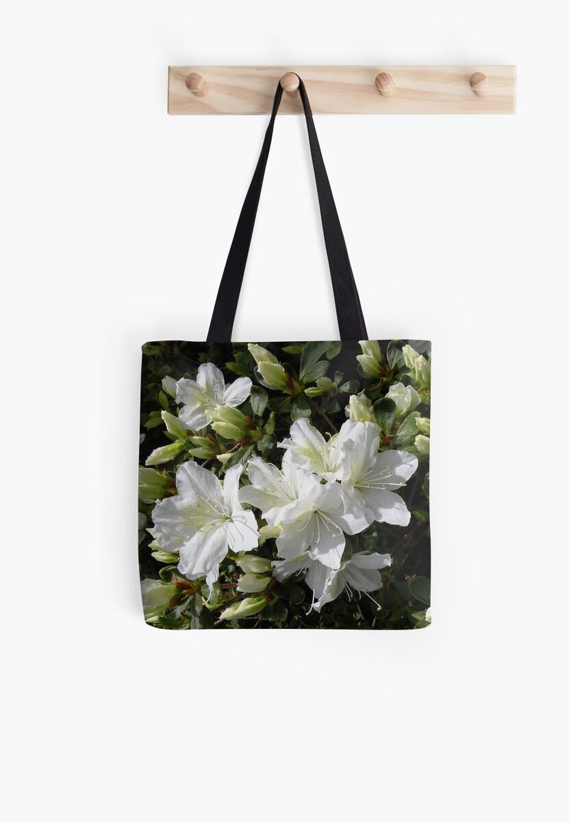 'Delaware Valley White Azalea Blooms' by Scott Bricker