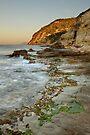 Wild coast by Patrick Morand