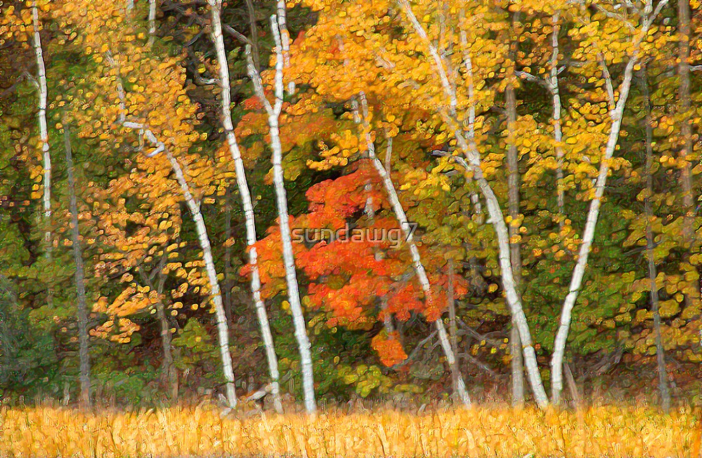 Painter's Autumn_1 by sundawg7