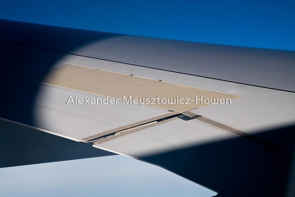 Wing by Alexander Meysztowicz-Howen